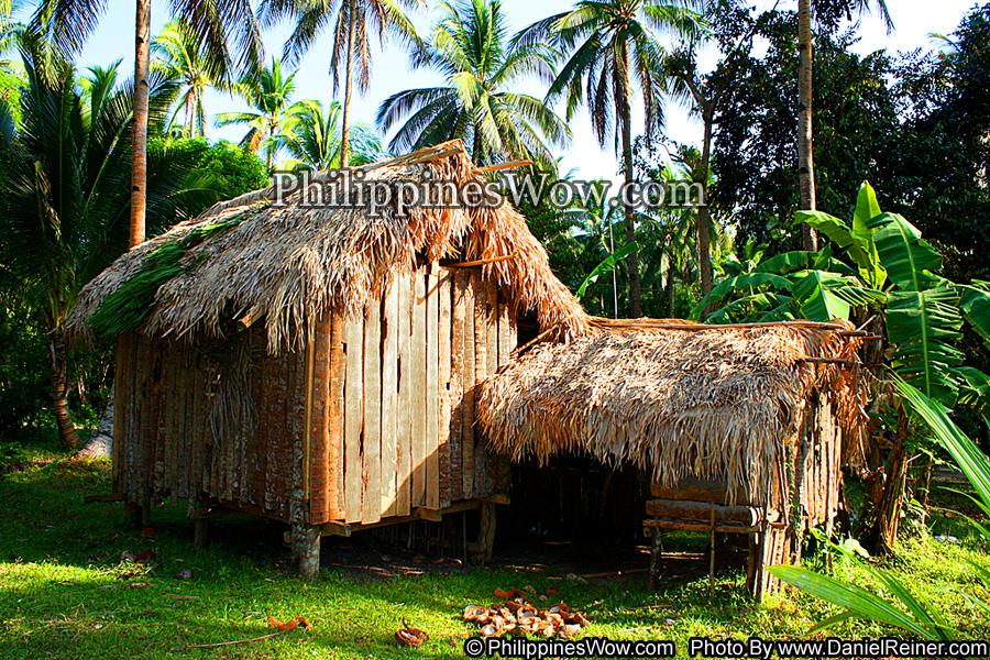 Philippine Nipa Hut